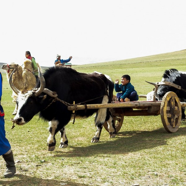 WONDERS OF MONGOLIA AUGUST GROUP TOUR