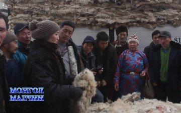 Study tour of herders to processing companies/Малчдын боловсруулах үйлдвэрт хийсэн танилцах аяллын