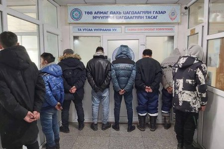 Төв аймгийн нутгаас 112 тооны адуу хулгайлсан этгээдүүдийг баривчлав