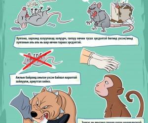 Амьтанд хазуулах