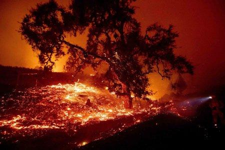 АНУ-ын Калифорни мужид гарсан ой хээрийн түймэр гамшгийн хэмжээнд хүрчээ