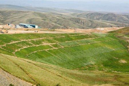 Засгийн газрын даалгавраар 110 га талбайд нөхөн сэргээлт хийжээ