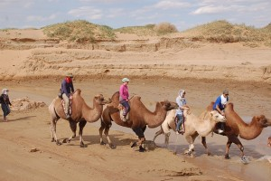 8 days' jeep tour to Gobi and Central Mongolia