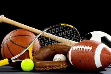 Спортын ямар төрөл танд тохирох вэ?
