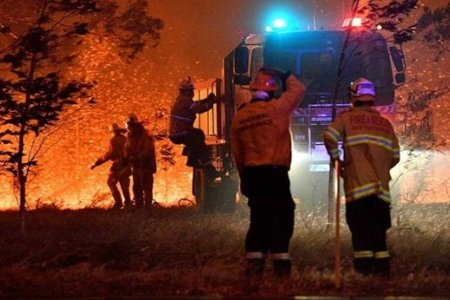 Австралийн ой, хээрийн түймэр зогсох шинжгүй байна...