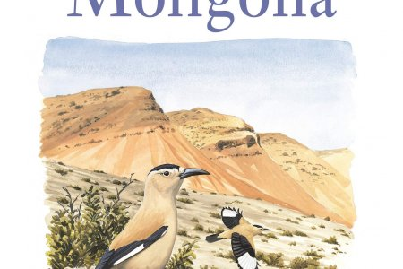 Birds of Mongolia is an indispensable guide for birders and travellers