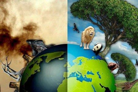 Манай дэлхий үнэхээр үзэмжтэй мөртлөө жижигхэн шүү!  Хайрлаарай, Хамгаалаарай!