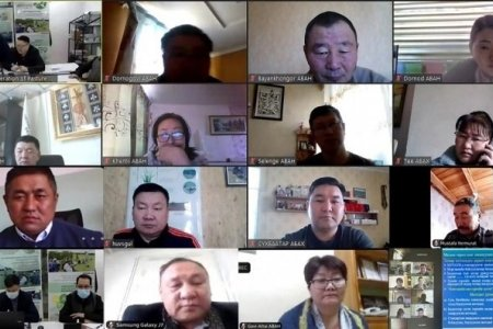 EXECUTIVE DIRECTORS OF AIMAG FEDERATION OF PASTURE USER GROUPS (AFED) PARTICIPATED ONLINE TRAINING FROM EIGHTEEN AIMAGS