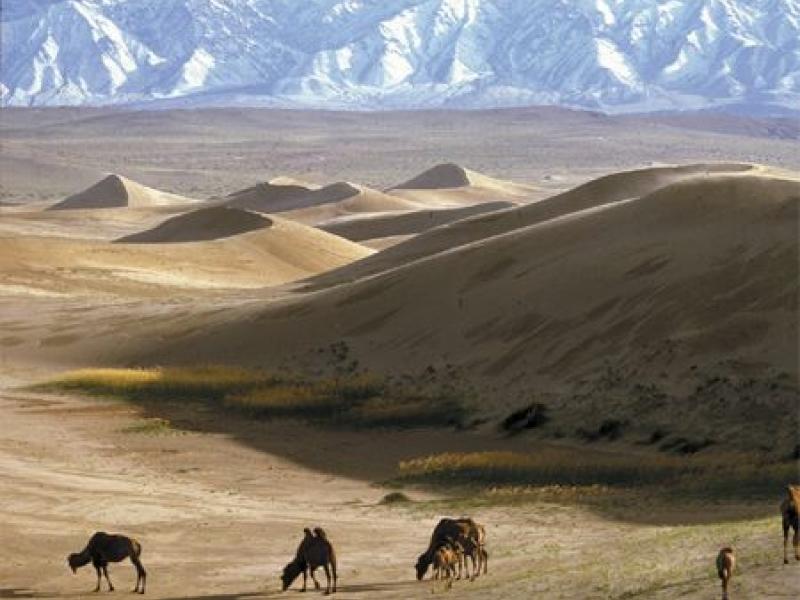 South Mongolia