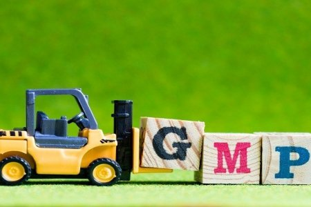 GMP гэж юу вэ?