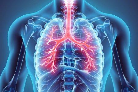 Ковидын дараах уушги нөхөн сэргээх аргууд