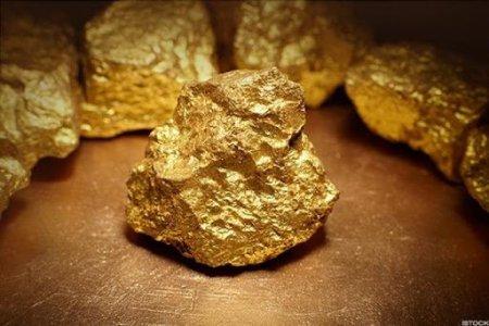 Канадын иргэн улсын хилээр 37.8 сая төгрөгийн өртөгтэй алт гаргахыг завджээ