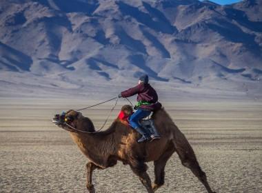 戈壁之旅(蒙古南部)