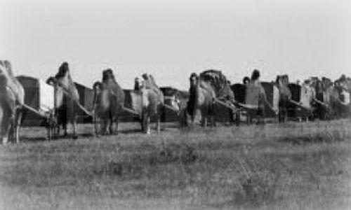 1910<br>ОНД