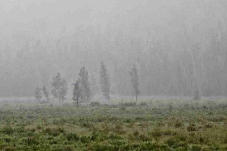 Дохио !!! Маргааш өдөр Төв аймгийн зүүн хэсэг, Хэнтий аймгийн нутгаар дуу цахилгаантай усархаг бороо орох тул үер усны аюулаас сэрэмжлүүлж байна