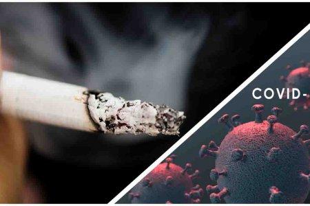Ковид-19 цар тахал тамхи татдаг хүмүүст хэрхэн нөлөөлдөг вэ ? Хүндрэл ?