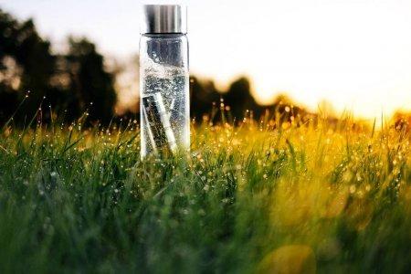 Та яг ямар ус уух хэрэгтэй вэ, Түүхий эсвэл буцалсан?