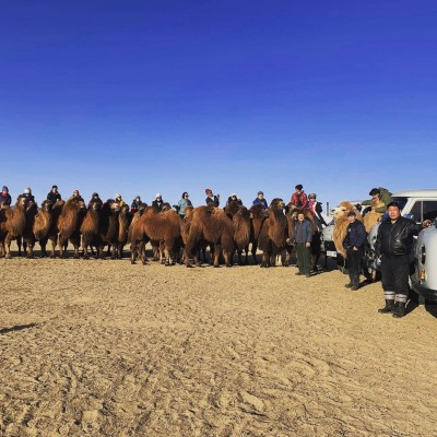THOUSAND CAMEL FESTIVAL 2021 March