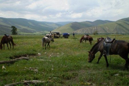 Why I love Mongolia
