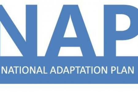 Short term Consultant to prepare detailed Terms of Reference on financial needs assessment for NAP defined