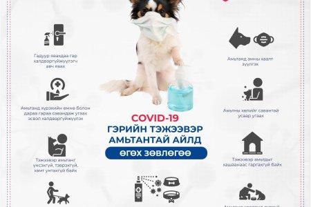 НЭМҮТ: Гэрийн тэжээвэр амьтантай бол Ковид-19 халдвараас урьдчилан сэргийлж дараах зөвлөмжийг хэрэгжүүлээрэй!