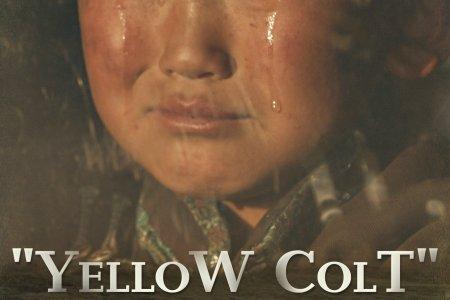 "SUNDUI OYUNBADAM: MY NOVEL ""HOMELAND"" BECAME A MOVIE ""YELLOW COLT"""