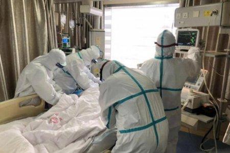 ХӨСҮТ: 49 хүн коронавирусийн халдвар авч 1 хүн нас барлаа