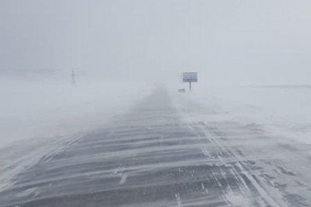 УЦУОШГ: Маргааш баруун аймгууд, 30,31-нд нутгийн хойд хэсгээр цас орж, цасаар шуурна