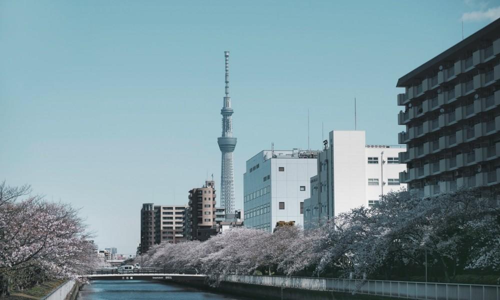 Японы менежментийн сайн туршлага судлах хөтөлбөр