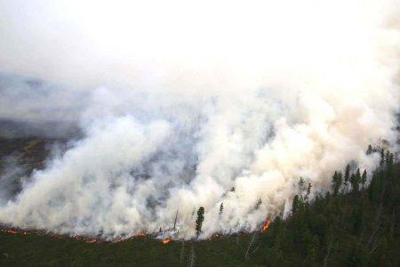 ОБЕГ: Түймрийг унтраахаар ажиллаж байна