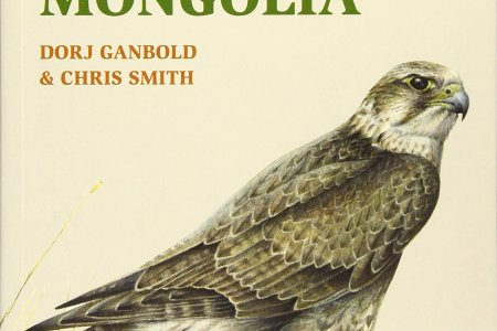 The first a field Guide to the Birds of Mongolia