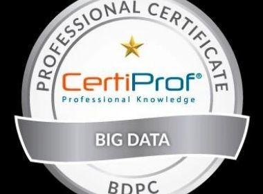 Big Data Professional Certificate