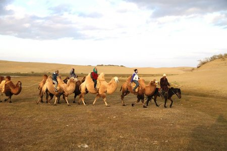 CAMELS AND MONASTERIES