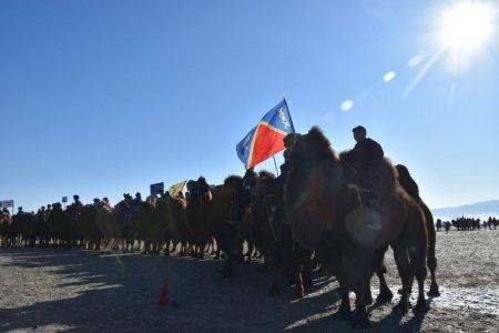 """""""Тэмээ тэнгэрийн амьтан 2020"""" тэмээчдийн улсын зөвлөгөөн боллоо"""