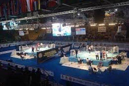 Монголын хоёр боксчин олимпийн наадамд оролцох эрхээ авлаа