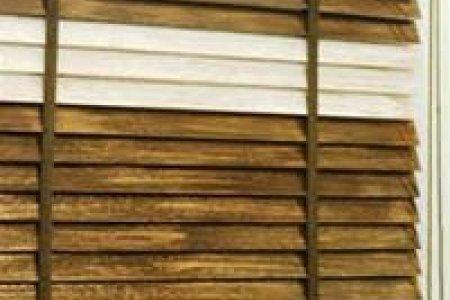 Модон хөшиг