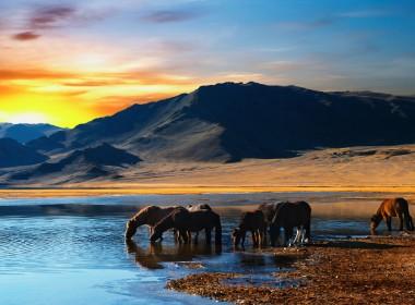 蒙古中部和北部