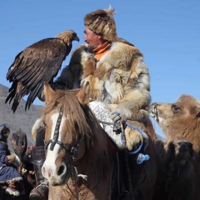 Altai eagle festival 2019