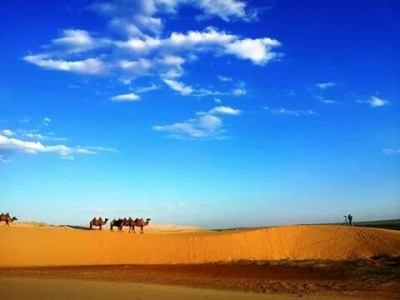 Gobi tour 6 nights / 7 days
