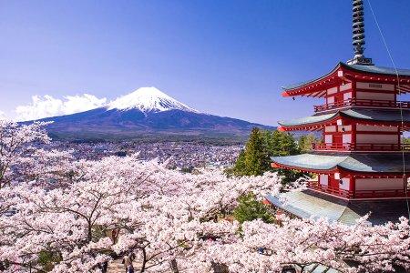 """Японы Засгийн газрын """"ЗАЛУУ УДИРДАГЧ"""" тэтгэлэгт хөтөлбөр зарлагджээ"""