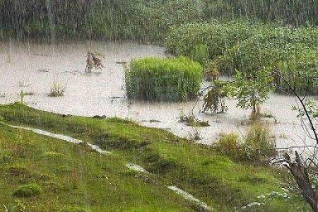 Малчид, иргэд, тээвэрчдийн анхааралд: 7, 8-нд нутгийн зарим газраар дуу цахилгаантай аадар бороо