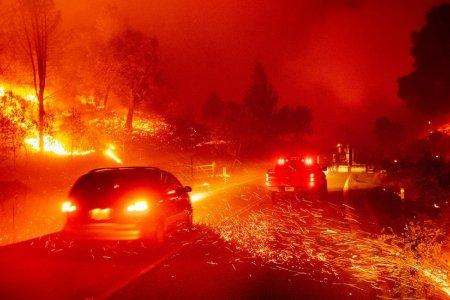 Ой хээрийн түймрийн улмаас Сан Франциско хот өтгөн утаанд дарагджээ