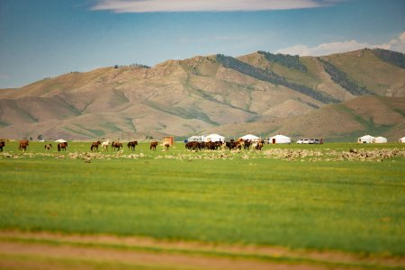 9 Reasons You Need to Visit Mongolia