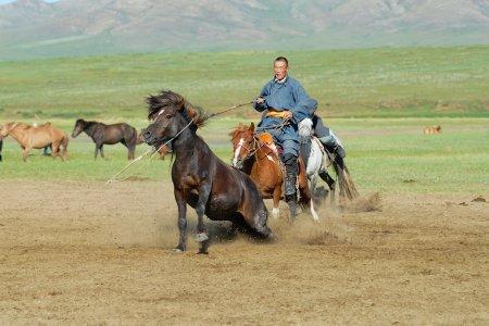 Grosse Mongolei Rundreise