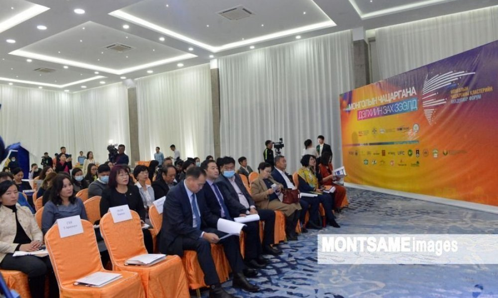 """Mongolian sea buckthorn to the global market"" forum takes place"
