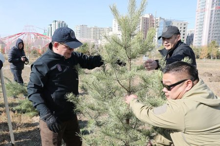 УИХ-ын дарга Үндэсний цэцэрлэгт хүрээлэнд уламжлалт ёсоороо мод тарилаа