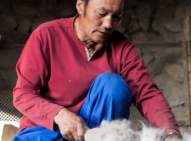 Sustainable Textile Production and EcoLabelling in Mongolia (STeP EcoLab)