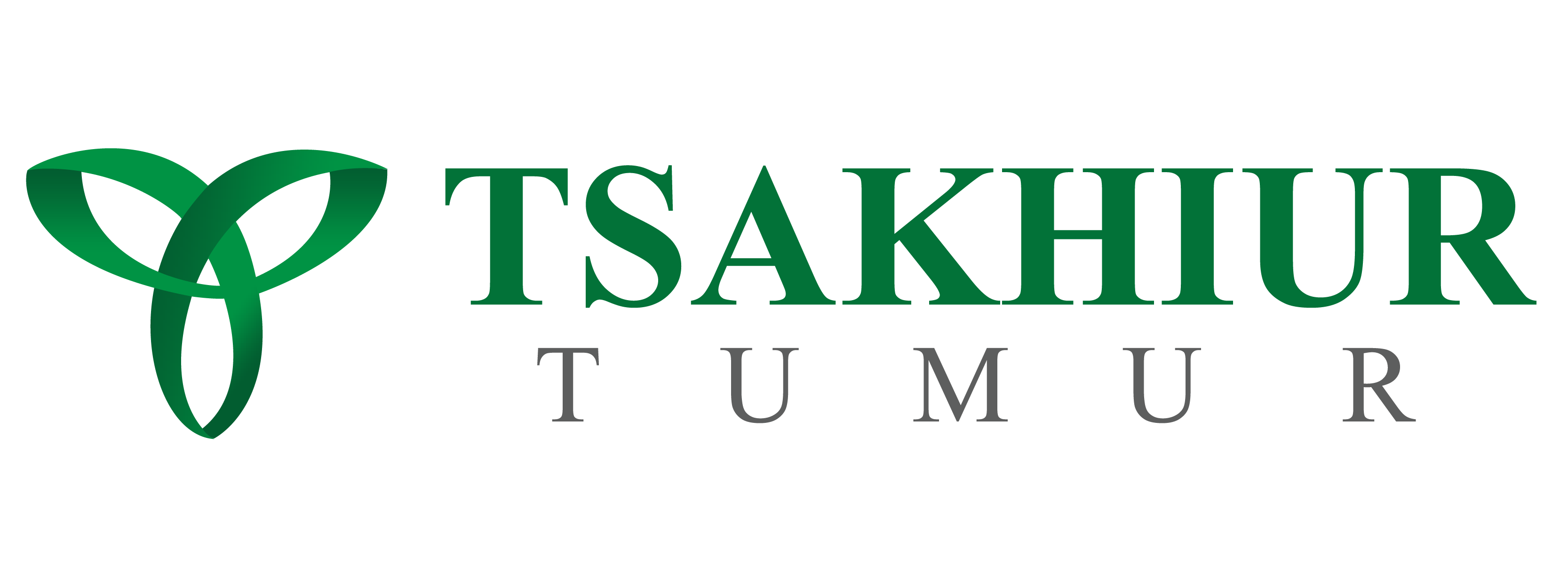 Tsakhiur Tumur LLC