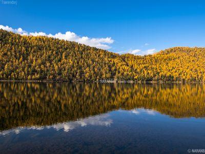 Shireet lake