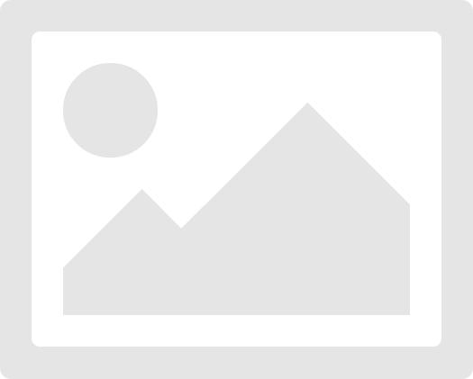 Монгольская ассоциация выпускников российских/советских вузов